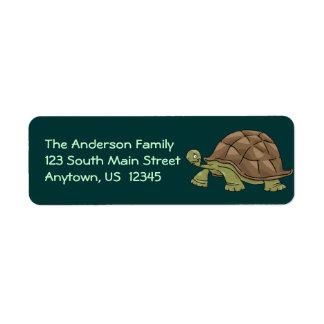 Tortoise Cartoon