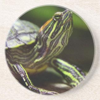 Tortoise Close Up Coaster