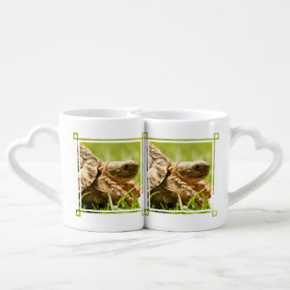 Tortoise Coffee Mug Set