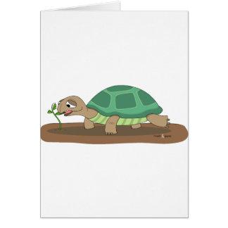Tortoise eating card