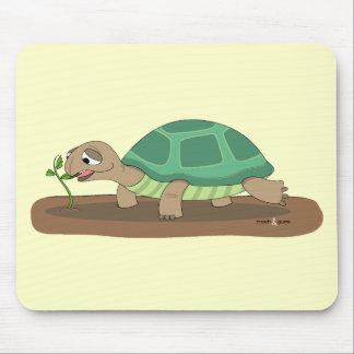 Tortoise eating mouse mat