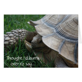 Tortoise Hurry Birthday Card