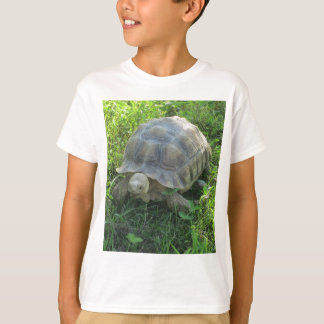Tortoise in Grass T-Shirt