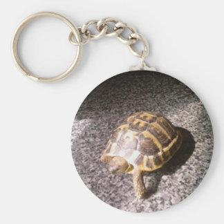 Tortoise Key Ring