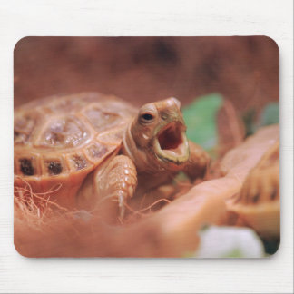 Tortoise Mouse Pad