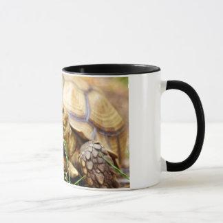 Tortoise Munching Grass Mug