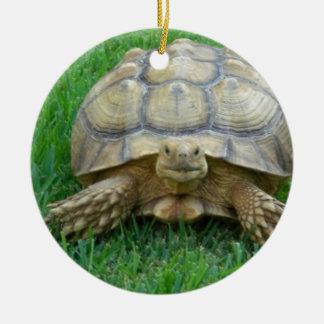 Tortoise Ornaments