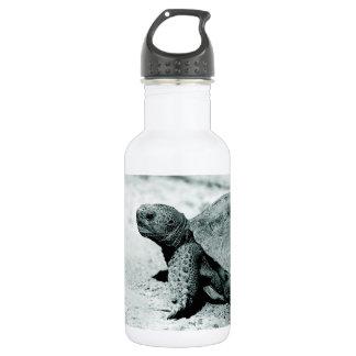 Tortoise & Turtle Custom 532 Ml Water Bottle