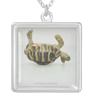 Tortoise upside down, balancing on shell silver plated necklace