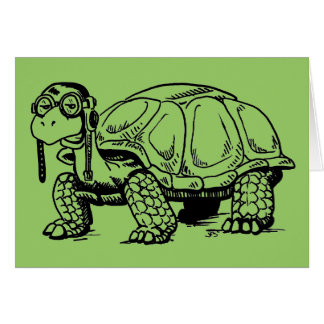 Tortoises are COOL! Greeting Card