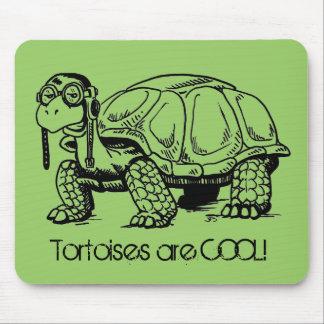 Tortoises are COOL! Mousepad