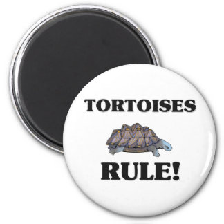 TORTOISES Rule! 6 Cm Round Magnet