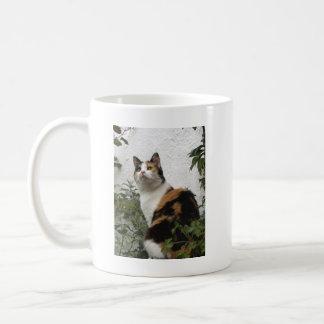 Tortoiseshell and White Cat Basic White Mug