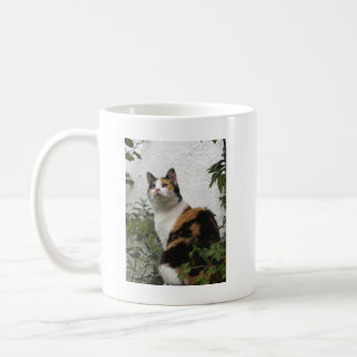 Tortoiseshell and White Cat Coffee Mug