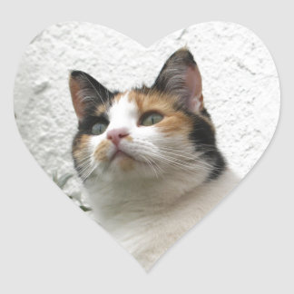 Tortoiseshell and White Cat Heart Sticker