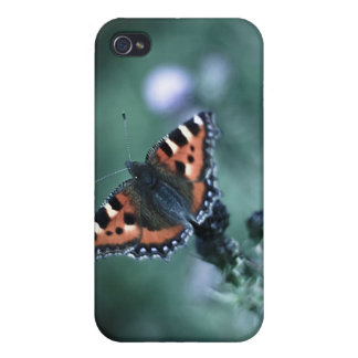 Tortoiseshell Butterfly iPhone 4/4S Case