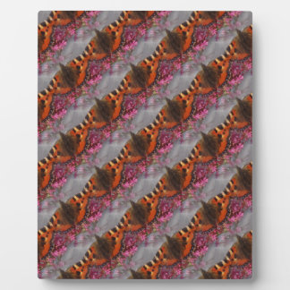 Tortoiseshell Butterfly Pattern Display Plaques