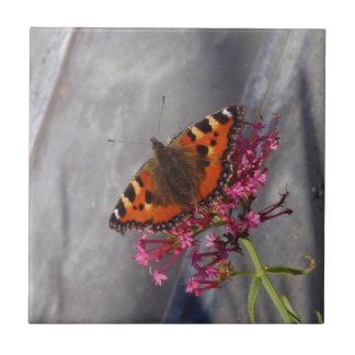 Tortoiseshell Butterfly Small Square Tile