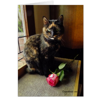 Tortoiseshell Cat and Rose Greeting Card