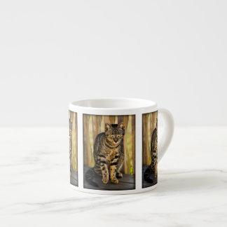 Tortoiseshell Cat Portrait, Closeup Animal Photo Espresso Mug