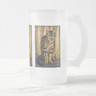 Tortoiseshell Cat Portrait, Closeup Animal Photo Frosted Glass Mug