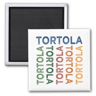 Tortola Cute Colorful Square Magnet