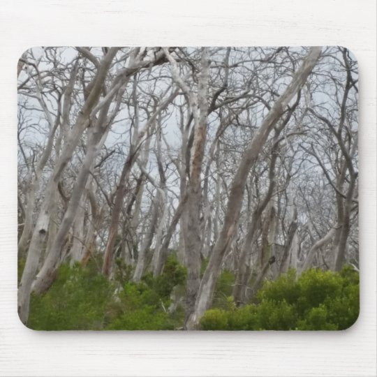 Tortured Trees Mouse Mat