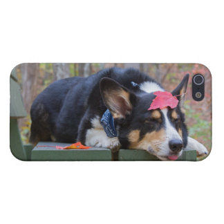 Total Relaxation iPhone 5 Covers