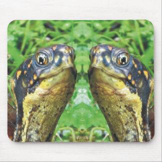 Totally Turtles Box Turtle Mousepad