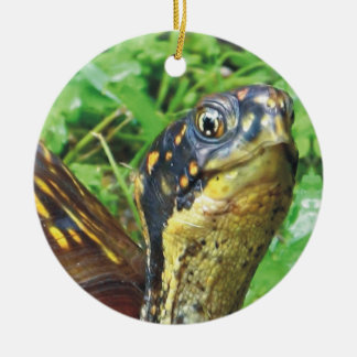 Totally Turtles Turtle Christmas Ornament