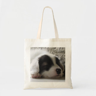 Tote baby dog.