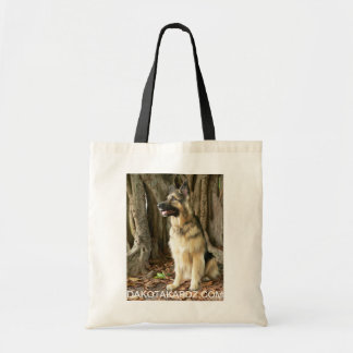 Tote can hold towels, dog treats and water bottle. budget tote bag