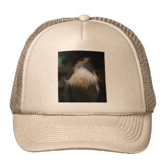 'Totem Hawk' Mesh Hats