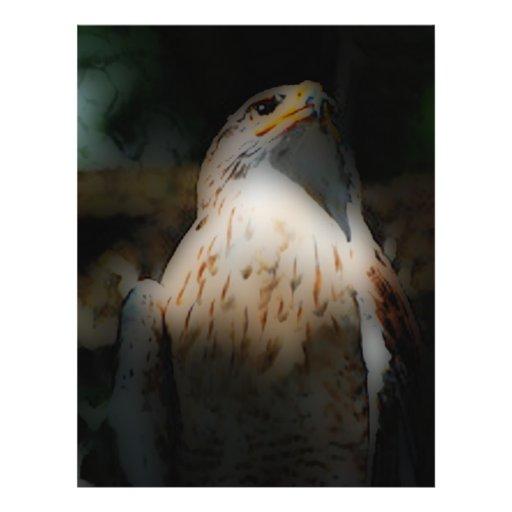 'Totem Hawk' Flyers