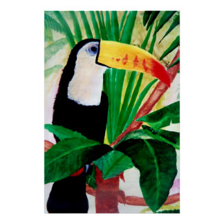 Toucan Amazon Jungle Exotic Wildlife Bird Poster
