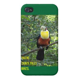 Toucan at Iguazu Falls iPhone case Cases For iPhone 4