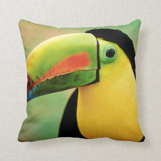 Toucan Bird Wild Nature Colorful Photography Cushion