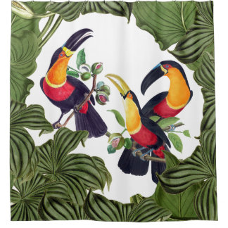 Toucan Birds Wildlife Animals Shower Curtain