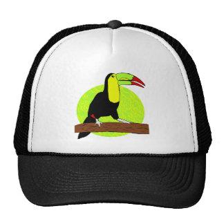 Toucan Cap