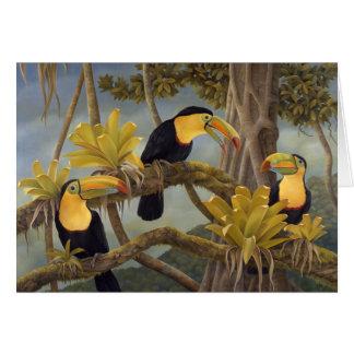 Toucan Card