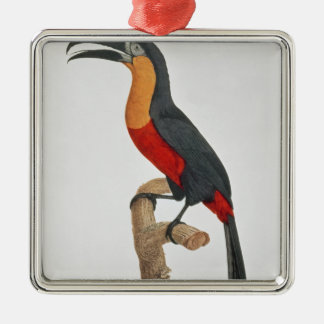 Toucan: Great Red-Bellied by Jacques Barraband Silver-Colored Square Decoration