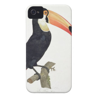 Toucan No.2, from 'History of the Birds of Paradis Case-Mate iPhone 4 Case