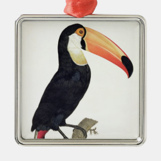 Toucan No.2, from 'History of the Birds of Paradis Christmas Ornament