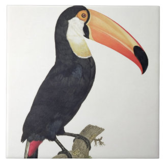 Toucan No.2, from 'History of the Birds of Paradis Tile