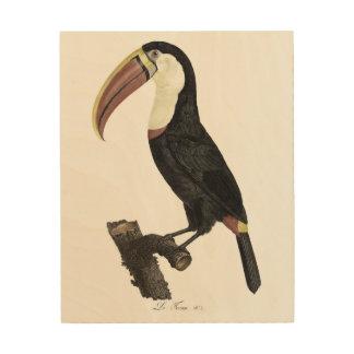 Toucan No. 3 Wood Print