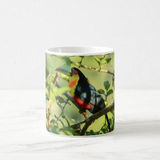 Toucan-of-peak-green Coffee Mug