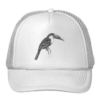 Toucan Realistic Bird Cartoon Cap