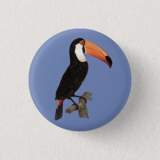 Toucan Tropical Bird Animal Fun Vacation Button