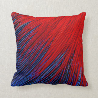 Toucanet Feather Abstract Cushion