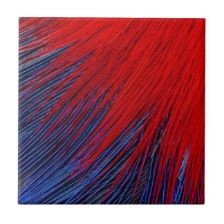 Toucanet Feather Abstract Tile